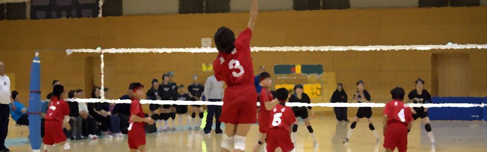 品川区小学生バレーボール連盟